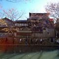 写真: 八幡掘秋風景