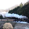 Photos: 雪が残る天矢場