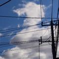 写真: 雲が好き
