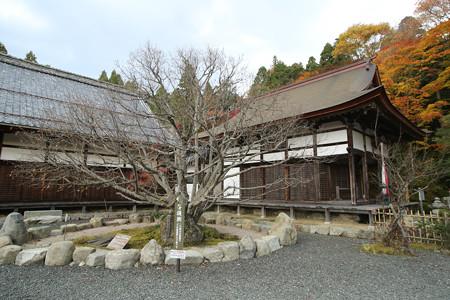 百済寺 - 03
