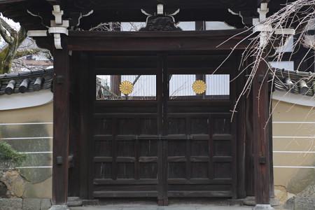 妙顕寺 - 07