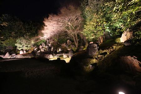 円徳院 (2)