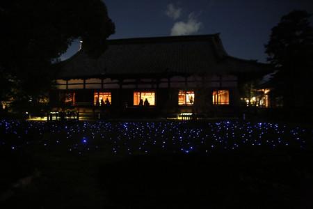 青蓮院 (14)