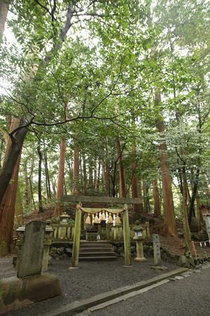 椿大神社 (1)