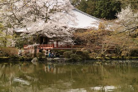 醍醐寺 (9)