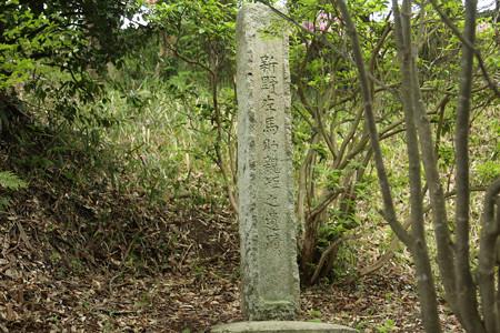 左馬武神社(新野左馬助親矩の墓) (5)