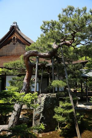 大覚寺 (9)