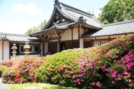 雲迎寺 (2)