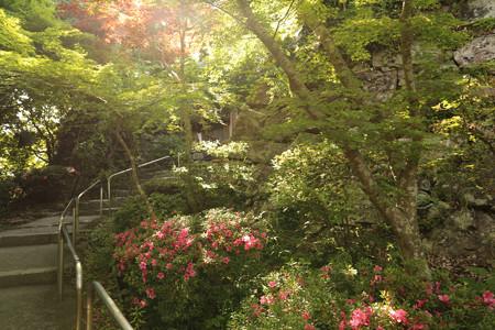 八幡山城 (2)
