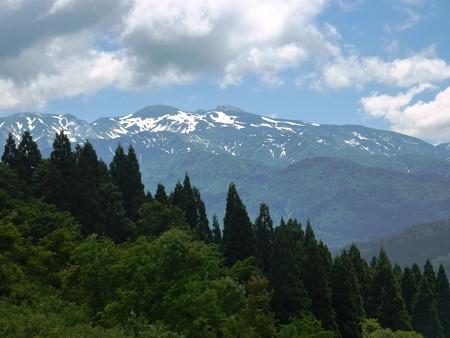 20-白山高山植物園