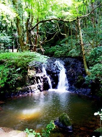 納涼の七つ滝