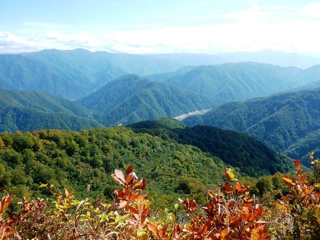 14-2017赤魔木古山