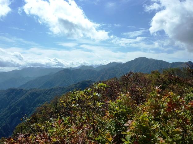 15-2017赤魔木古山