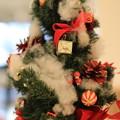 Photos: Christmasツリー