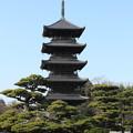 国分寺五重の塔