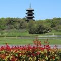 写真: 吉備五重の塔