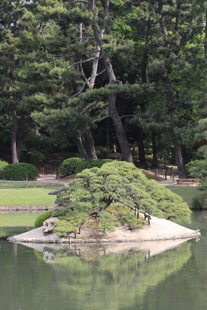 Photos: 新緑後楽園