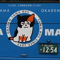 写真: たまバス