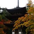 写真: 西明寺