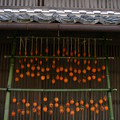 Photos: 東濃を巡る1