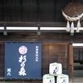 奈良井宿 (造り酒屋杉の森)