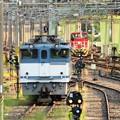 Photos: 貨物駅