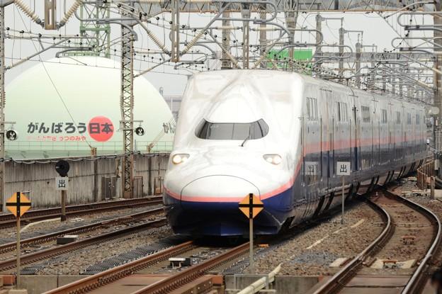 東北新幹線開業35周年記念号 がんばろう日本