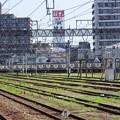 Photos: 宇都宮運転所にE531系水カツK554編成留置