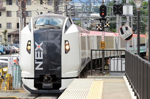 Photos: E259系成田エクスプレス8号河口湖行き富士急行富士山入線