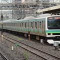 Photos: 常磐線快速E231系