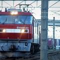 写真: 金太郎23号機牽引コンテナ貨物発車