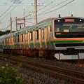 Photos: 夕陽の宇都宮線