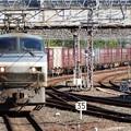Photos: EF66 107代走5081レ京都7番通過