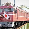 Photos: EF81 81号機日章旗付き