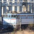 Photos: EF65 2091号機