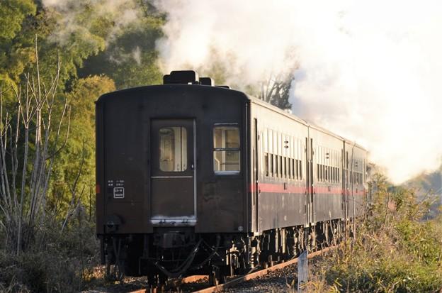 SLもおか新年号50系客車