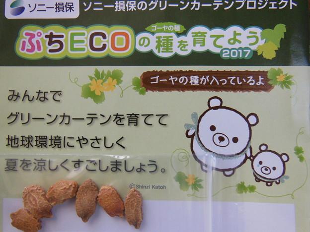 ぷちECOの種