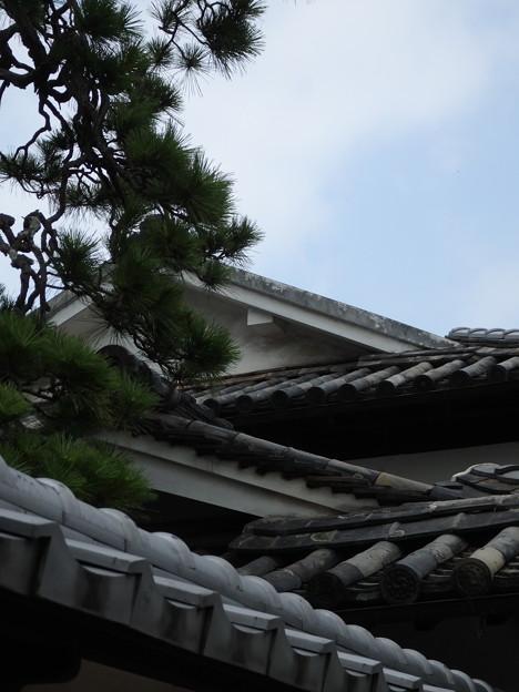 重なる屋根