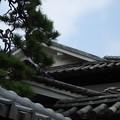 Photos: 重なる屋根