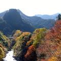 Photos: rs-141122_09_北氷川橋よりの眺め(氷川渓谷) (4)