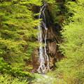 rs-170514_S1607_大久保の滝(西沢渓谷)