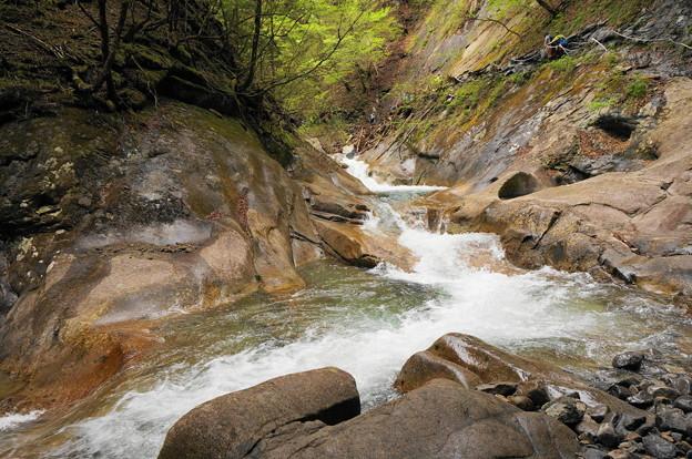 rs-170514_S1624_貞泉の滝の上流(西沢渓谷) (3)