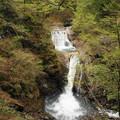 rs-170514_S1634_七つ釜五段の滝(西沢渓谷) (5)
