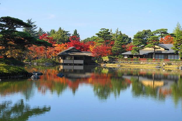 171107_07_日本庭園の様子・S18200(昭和記念公園) (12)