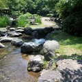 写真: 行田公園2