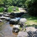 Photos: 行田公園2