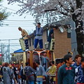 写真: お祭りと桜
