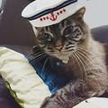 写真: 水兵さん