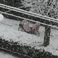 雪2018