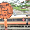 Photos: さよなら東武の快速列車の旅23